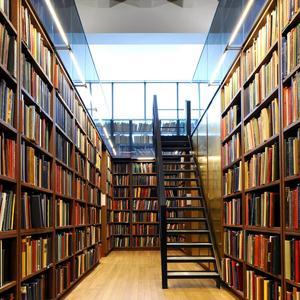 Библиотеки Багдарина